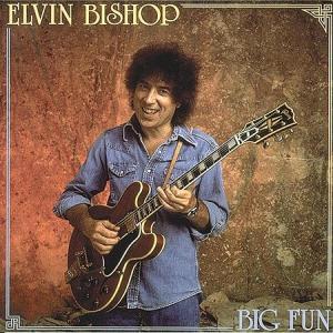 Big Fun - Bishop Elvin - Musik - BLUES - 0014551476726 - October 25, 1990