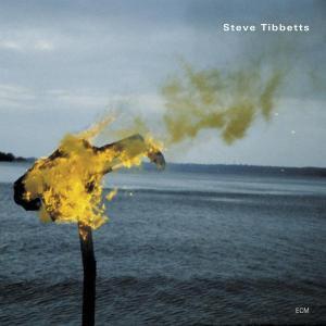 A Man About A Horse - Steve Tibbetts - Musik - ECM - 0044001706820 - October 1, 2007