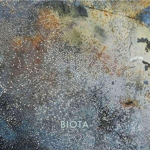 Funnel To A Thread - Biota - Musik - RER - 0752725033824 - December 23, 2014