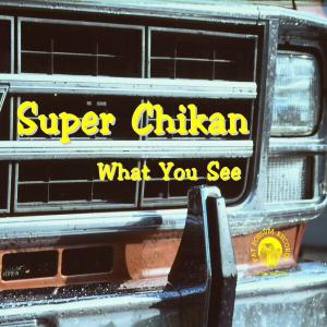 What You See - Super Chikan - Musik - BLUES - 0045778032921 - 22/2-2010
