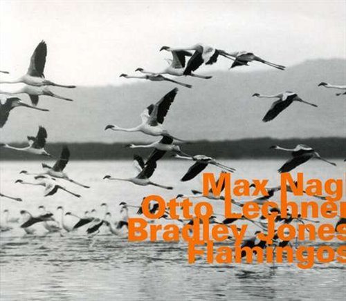 Flamingos - Nagl / Lechner / Jones - Musik - HATOLOGY - 0752156060925 - June 10, 2004